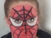 spider1.jpg